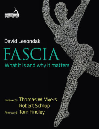Fascia what it is and how it works